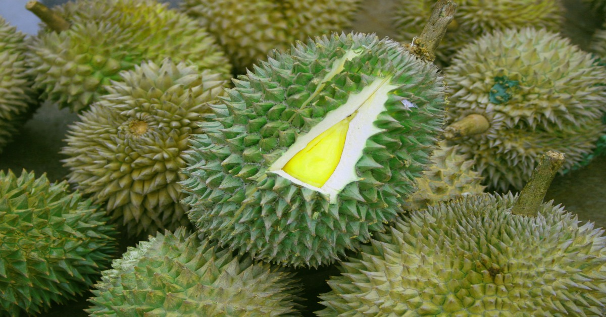 durian sa davao city