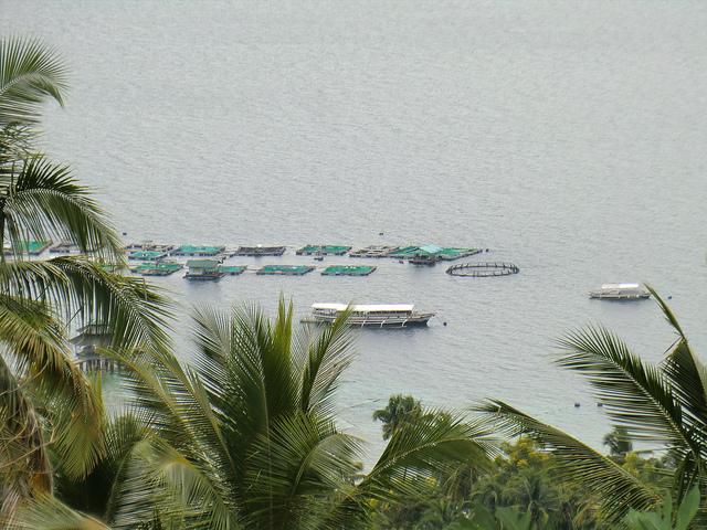 samal-mariculture-park