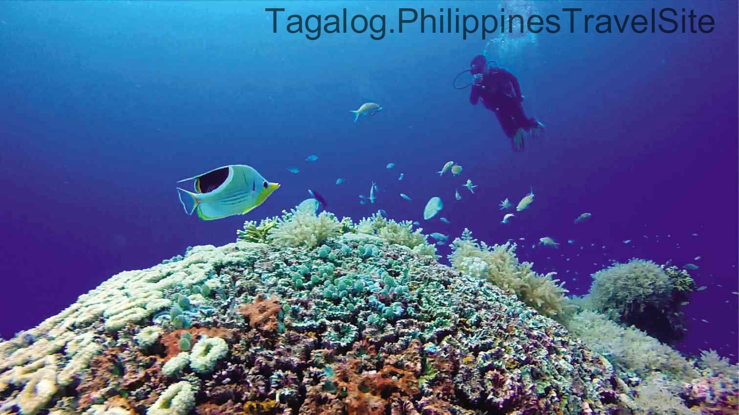 Tourist Atraksyon sa Pilipinas