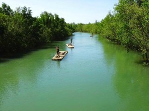 bakhawan-eco-park